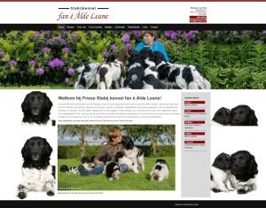 screencapture-www-alde-leane-com-1460145256637