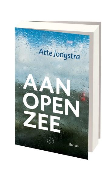 jongstra_aan_open_zee_3d