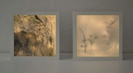 some shadow box test pieces (10 x 10 inches), 2012