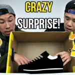 CRAZY WILD WHAT'S IN THE BOX CHALLENGE – SNEAKER EDITION! CRAZY WILD SURPRISES!!
