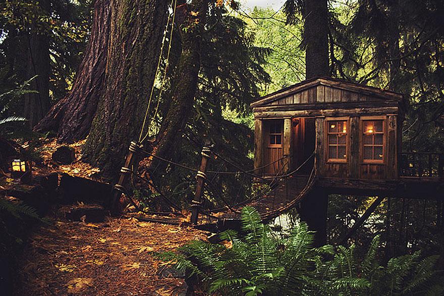 Most Astonishing Treehouses