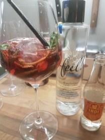 Gin Tonic mit Himbeeren und Minze