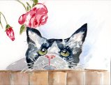 A Cat Named Yardley Original Watercolor SOLD Cards and prints are available.