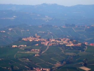 Vineyard vistas