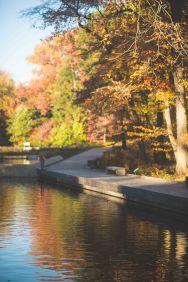 The river runs through the gardens.