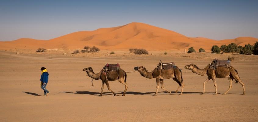 Wiza do Maroka i inne niezbędne dokumenty