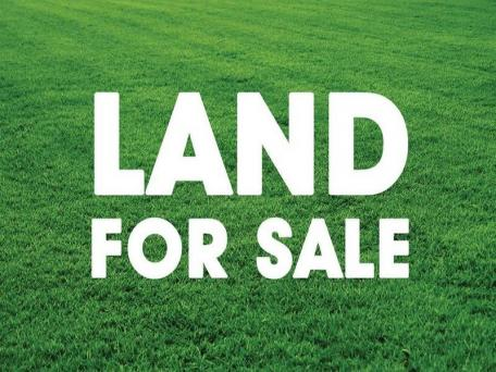 bisnis tanah