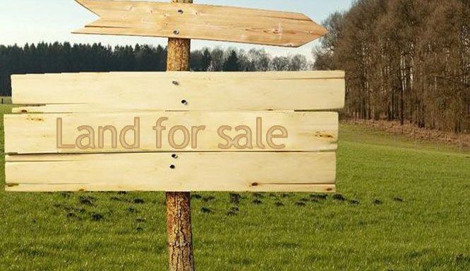 7 Cara Bisnis Tanah Bagi Pemula Yang Menguntungkan