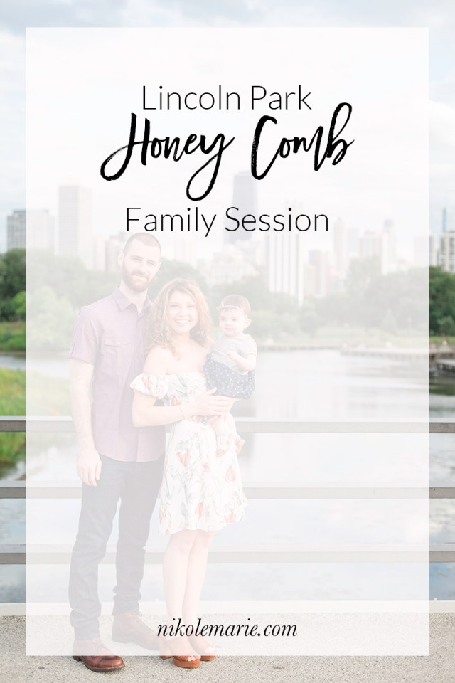 Lincoln Park Honey Comb Family Photos