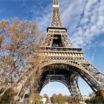 عاجل  |    إخلاء «برج إيفل» في باريس