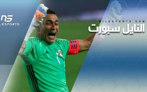Egypt's El-Hadary & Salah on African Player award shortlist