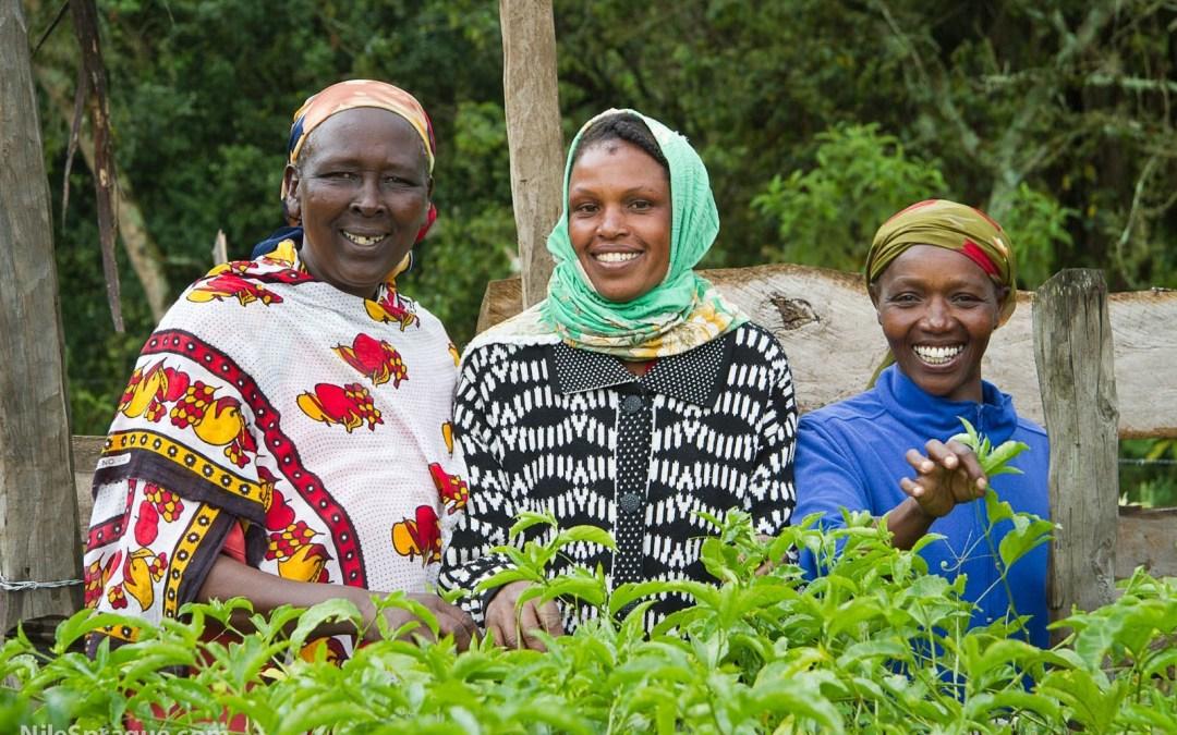 Photo: Women smiling, passion fruit farmers, Tiret Self-Help Group, Project Nurture, Tiret, Kenya.