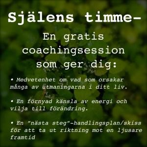 Gratis coaching