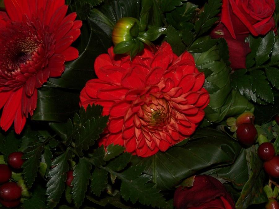 Blomster til pigerne
