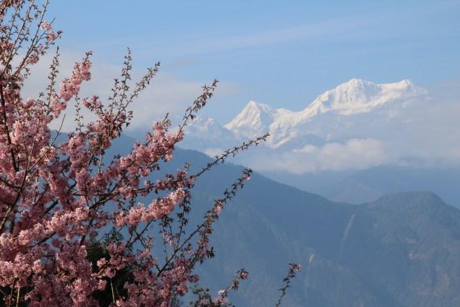 vue de Pelling, Sikkim, Kanchenjunga