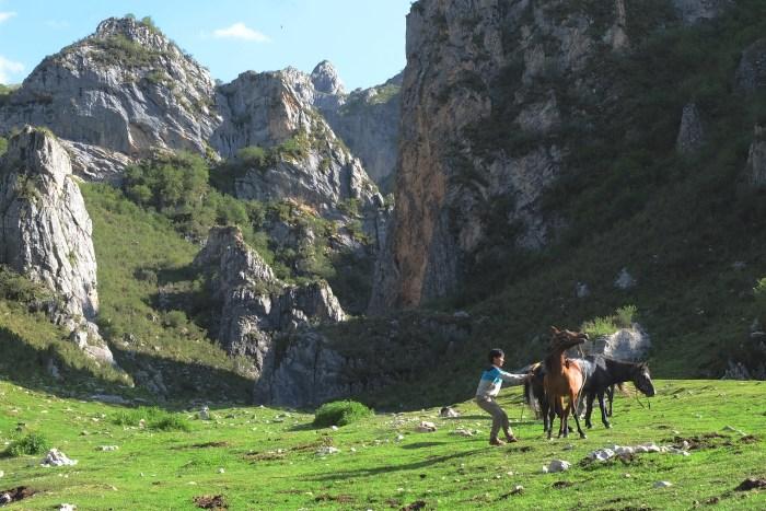 Taksang Lhamo