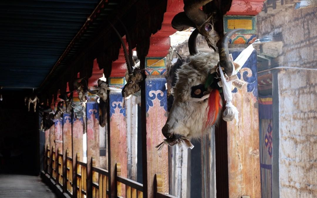 Août 2017, Tibet – Lhassa et Tsurphu