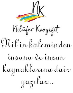 Nil_Katilim_Site2
