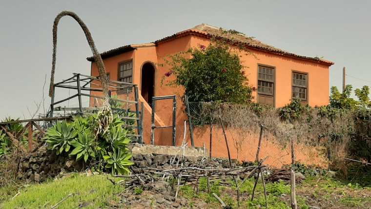 Fantastic finca for agricultural purposes with a restored old building!!!