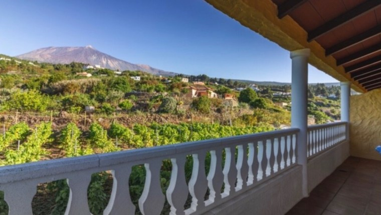 Finca: Rural farm with 5 vacational apartments in Icod, all with Teide and sea view.