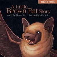 A Little Brown Bat Story