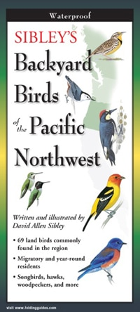 Sibley's Backyard Birds of the Pacific Northwest-Folding Guides