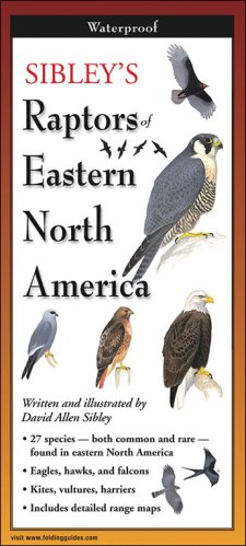 Sibley's Raptors of Eastern North America – Folding Guide
