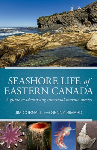 Seashore Life of Eastern Canada