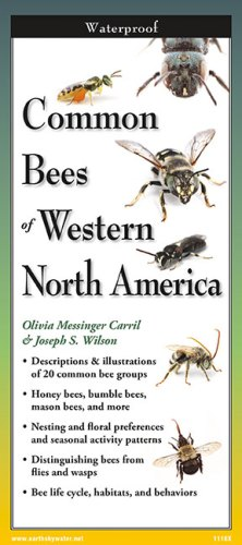 Common Bees of Western North America – Folding Guide