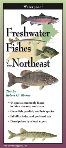 Freshwater Fishes of the Northeast – Folding Guide