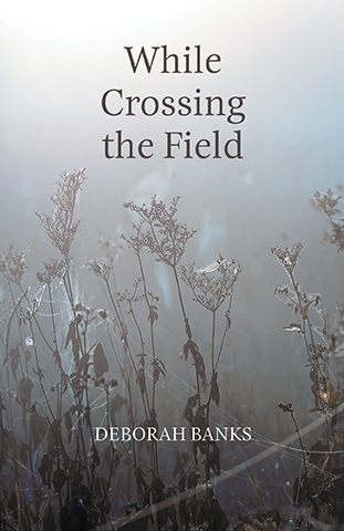 While Crossing the Field