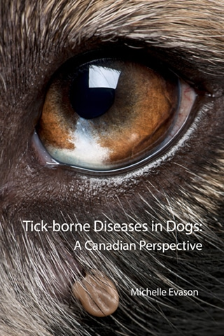 Tick-borne Diseases in Dogs