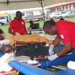 Lagos state blood transfusion service