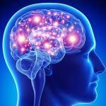 Epilepsy myths