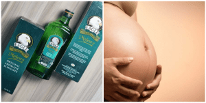 Effects of Dry Gin on Pregnancy