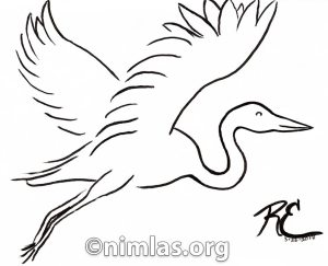 Daily Creativity: Egret Line Drawing