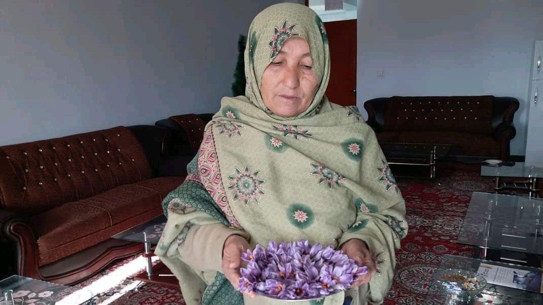 بینظیر حسینی با نمونهای از گلهای زعفران که خودش کاشته است. عکس:  نیمرخ