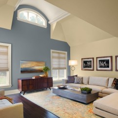 Unique Colors For Living Rooms Room Fancy Curtains 20 With Color Combinations Image Via Www Houzz Com