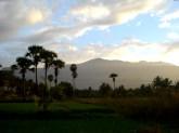New photos 2011 373