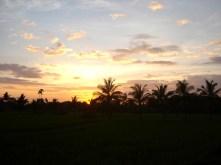 New photos 2011 390