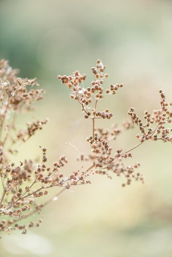 paar-foto-shooting-bern-nina-wuethrich-photography-02