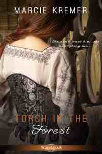 Torch in the Forest New Cover Sept 2013