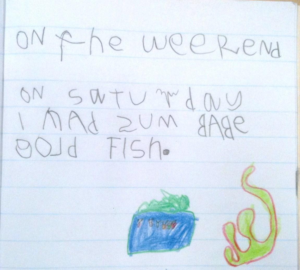 Week 7 Term 2 Writing Samples 5 Amp 6 Year Olds 17 Weeks