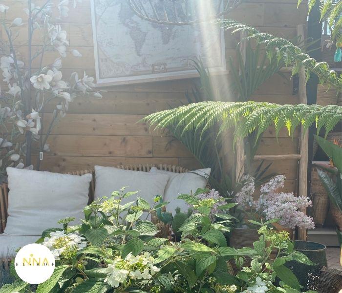 Paradijs in Huis