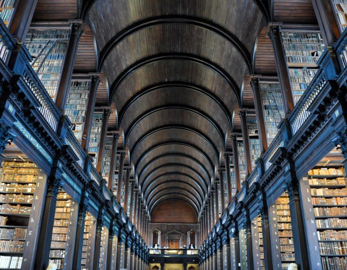 Early Access to the Book of Kells: Is It Worth It?