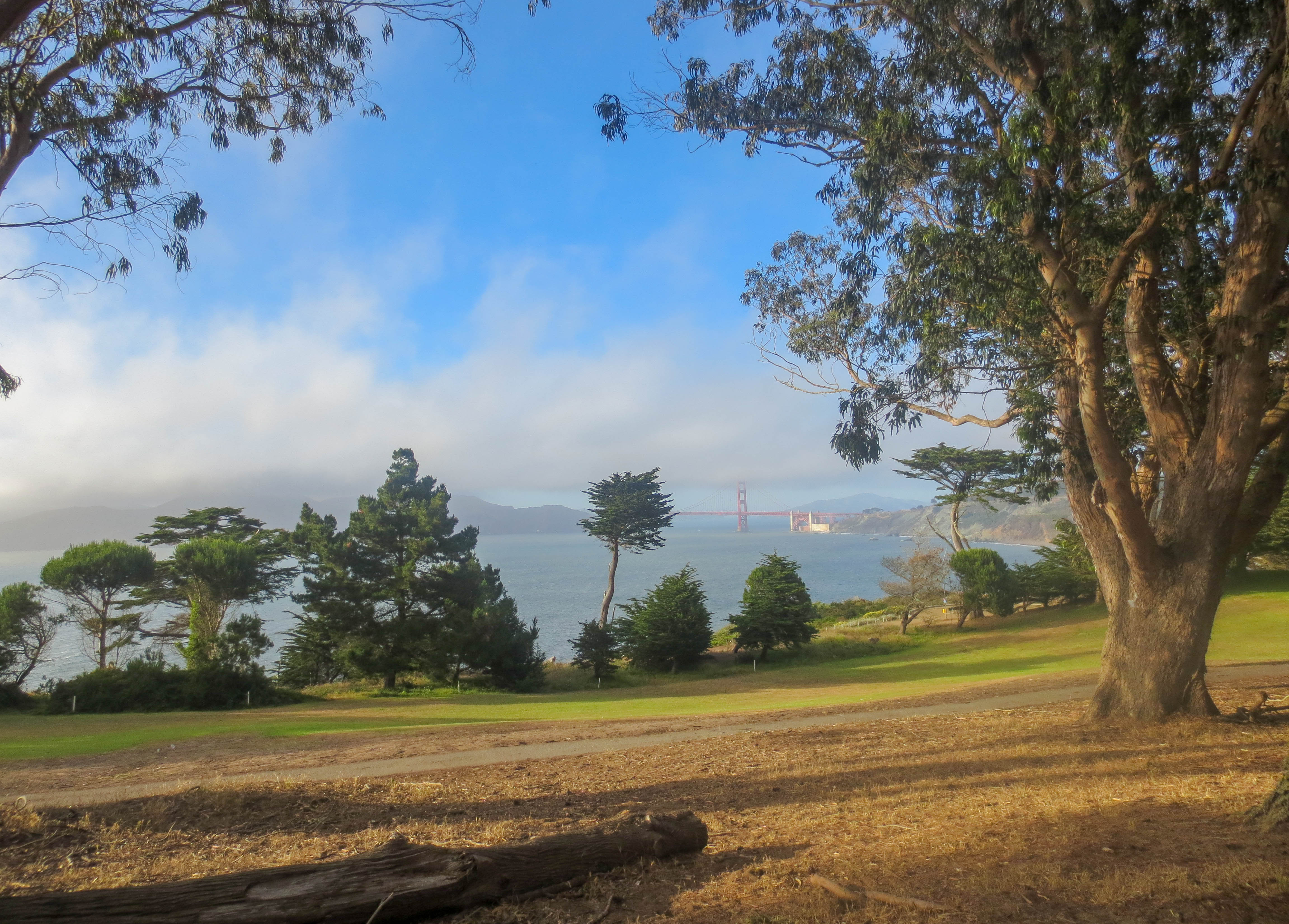 20 Free Things to do in San Francisco