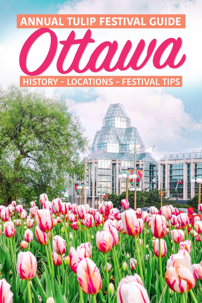 Ottawa Tulip Festival Pin