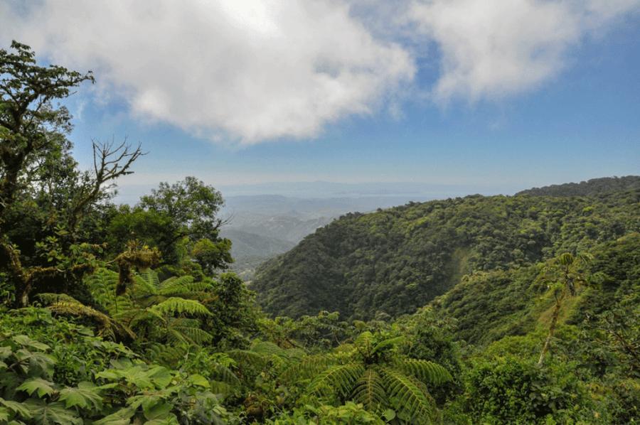 Monteverde Cloud Forest Biological Preserve