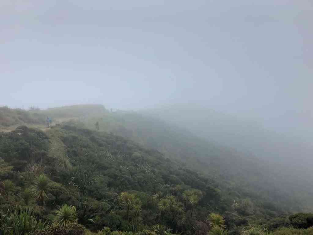 Travel the Pathway to the Underworld at Cape Reinga