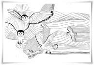 Barn owls